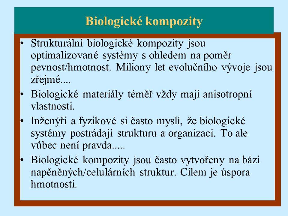 Strukturální biologické kompozity jsou optimalizované systémy s ohledem na poměr pevnost/hmotnost. Miliony let evolučního vývoje jsou zřejmé.... Biolo
