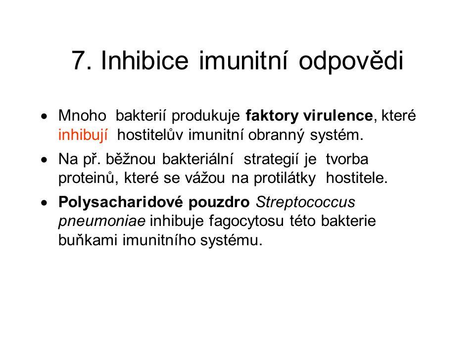 7. Inhibice imunitní odpovědi  Mnoho bakterií produkuje faktory virulence, které inhibují hostitelův imunitní obranný systém.  Na př. běžnou bakteri