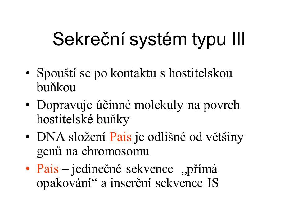 """Sekreční systém typu III Spouští se po kontaktu s hostitelskou buňkou Dopravuje účinné molekuly na povrch hostitelské buňky DNA složení Pais je odlišné od většiny genů na chromosomu Pais – jedinečné sekvence """"přímá opakování a inserční sekvence IS"""