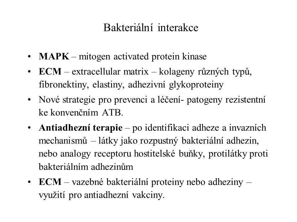 Bakteriální interakce MAPK – mitogen activated protein kinase ECM – extracellular matrix – kolageny různých typů, fibronektiny, elastiny, adhezivní glykoproteiny Nové strategie pro prevenci a léčení- patogeny rezistentní ke konvenčním ATB.