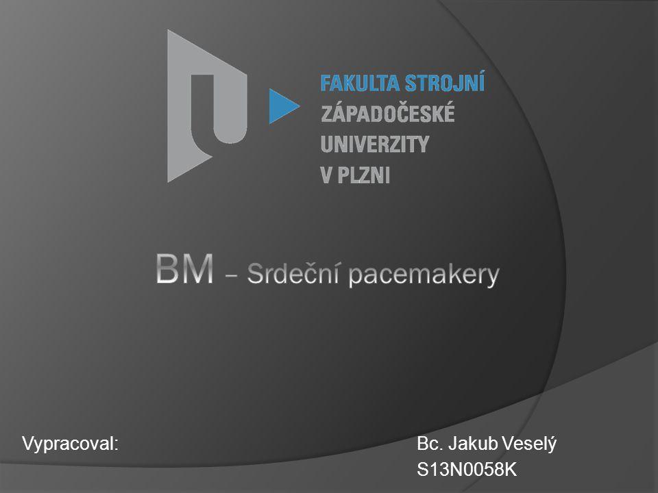 Vypracoval: Bc. Jakub Veselý S13N0058K