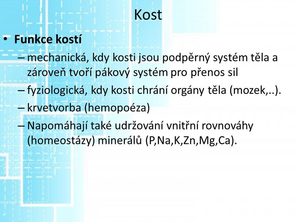 Slitiny titanu Jiný referát Slitiny na bázi titanu jsou materiály pro pacienty s přecitlivělostí na některou ze složek z nerezavějící oceli nebo kobalt-chrom slitiny.