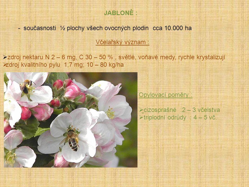 JABLONĚ : - současnosti ½ plochy všech ovocných plodin cca 10.000 ha Včelařský význam :  zdroj nektaru N 2 – 6 mg, C 30 – 50 %, světlé, voňavé medy,