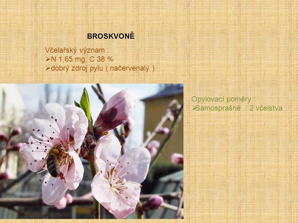 BROSKVONĚ Včelařský význam :  N 1,65 mg, C 38 %  dobrý zdroj pylu ( načervenalý ) Opylovací poměry :  Samosprašné : 2 včelstva