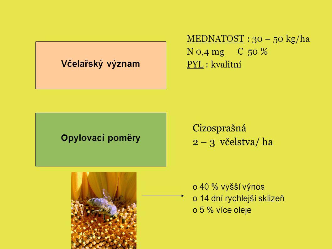 Včelařský význam MEDNATOST : 30 – 50 kg/ha N 0,4 mg C 50 % PYL : kvalitní Opylovací poměry Cizosprašná 2 – 3 včelstva/ ha o 40 % vyšší výnos o 14 dní rychlejší sklizeň o 5 % více oleje