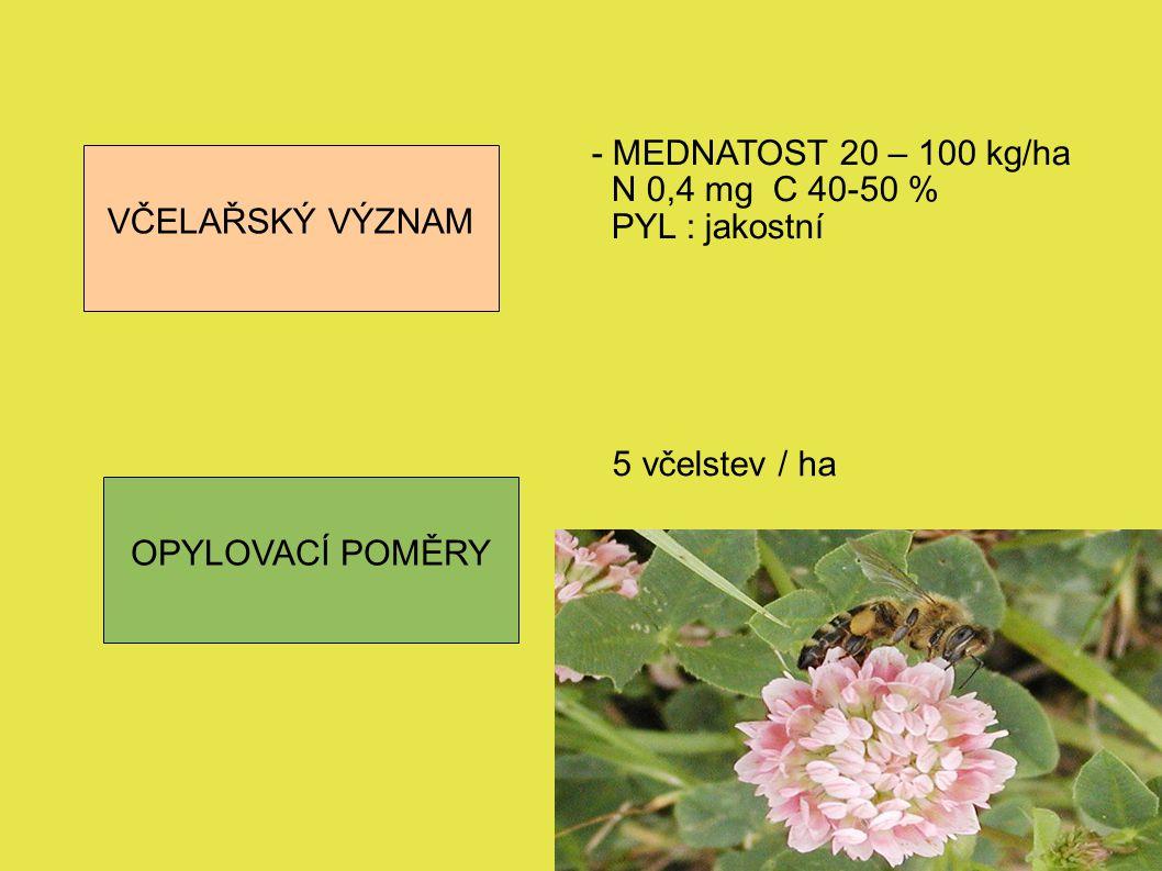 VČELAŘSKÝ VÝZNAM OPYLOVACÍ POMĚRY - MEDNATOST 20 – 100 kg/ha N 0,4 mg C 40-50 % PYL : jakostní 5 včelstev / ha