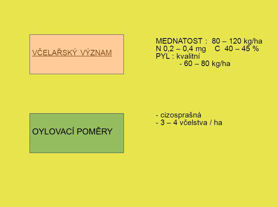 VČELAŘSKÝ VÝZNAM OYLOVACÍ POMĚRY MEDNATOST : 80 – 120 kg/ha N 0,2 – 0,4 mg C 40 – 45 % PYL : kvalitní - 60 – 80 kg/ha - cizosprašná - 3 – 4 včelstva / ha