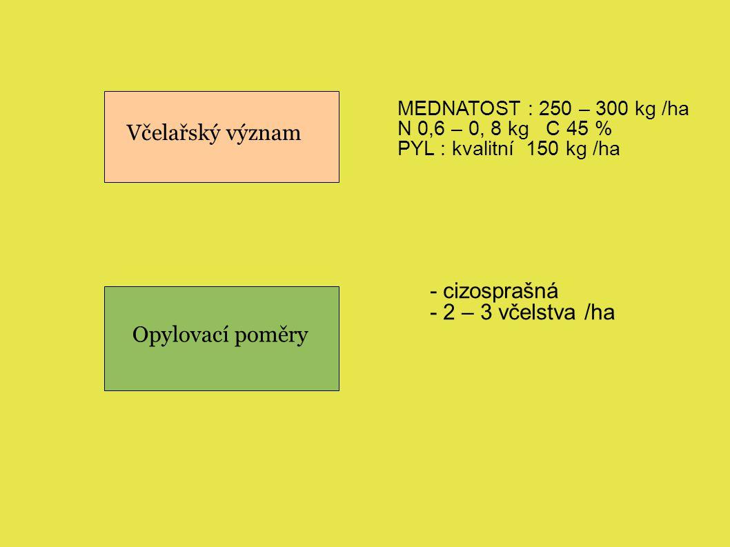 Včelařský význam Opylovací poměry MEDNATOST : 250 – 300 kg /ha N 0,6 – 0, 8 kg C 45 % PYL : kvalitní 150 kg /ha - cizosprašná - 2 – 3 včelstva /ha
