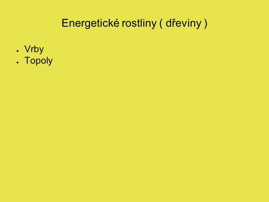 Energetické rostliny ( dřeviny ) ● Vrby ● Topoly