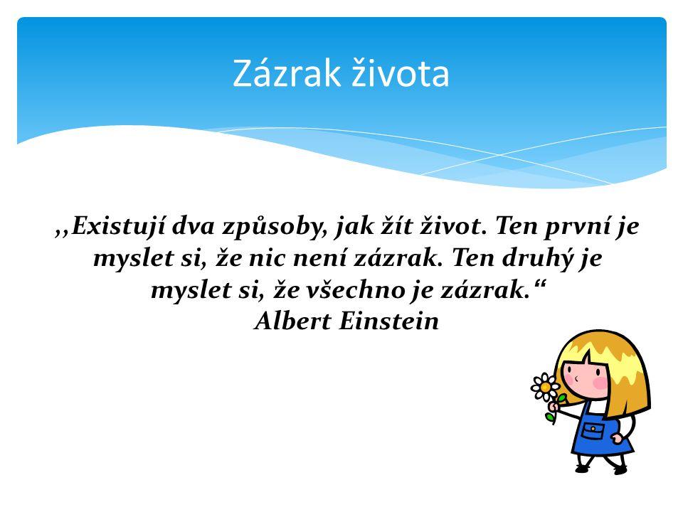 """Zázrak života,,Existují dva způsoby, jak žít život. Ten první je myslet si, že nic není zázrak. Ten druhý je myslet si, že všechno je zázrak."""" Albert"""