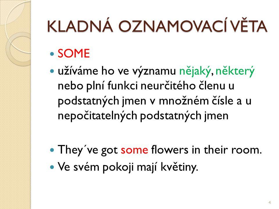 KLADNÁ OZNAMOVACÍ VĚTA SOME užíváme ho ve významu nějaký, některý nebo plní funkci neurčitého členu u podstatných jmen v množném čísle a u nepočitatelných podstatných jmen They´ve got some flowers in their room.