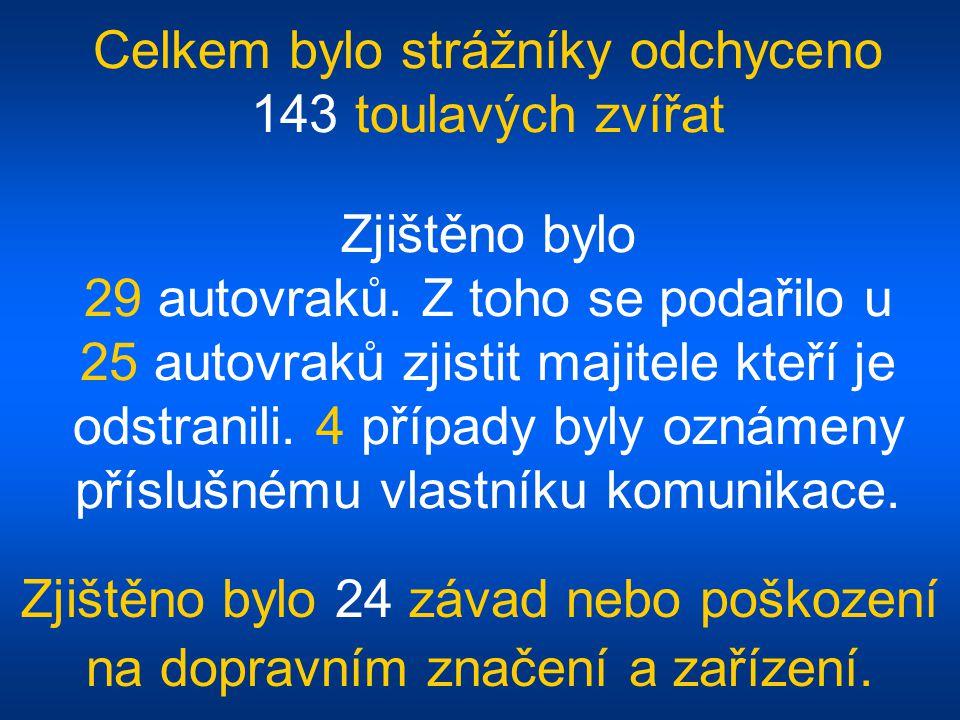Celkem bylo strážníky odchyceno 143 toulavých zvířat Zjištěno bylo 29 autovraků.