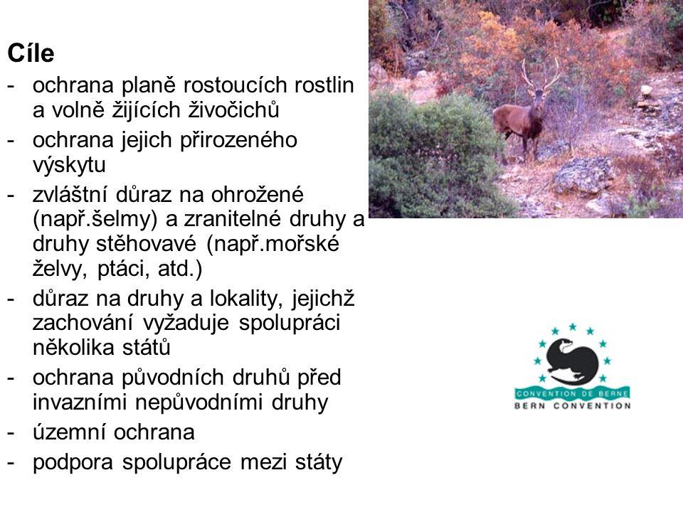 Cíle -ochrana planě rostoucích rostlin a volně žijících živočichů -ochrana jejich přirozeného výskytu -zvláštní důraz na ohrožené (např.šelmy) a zrani
