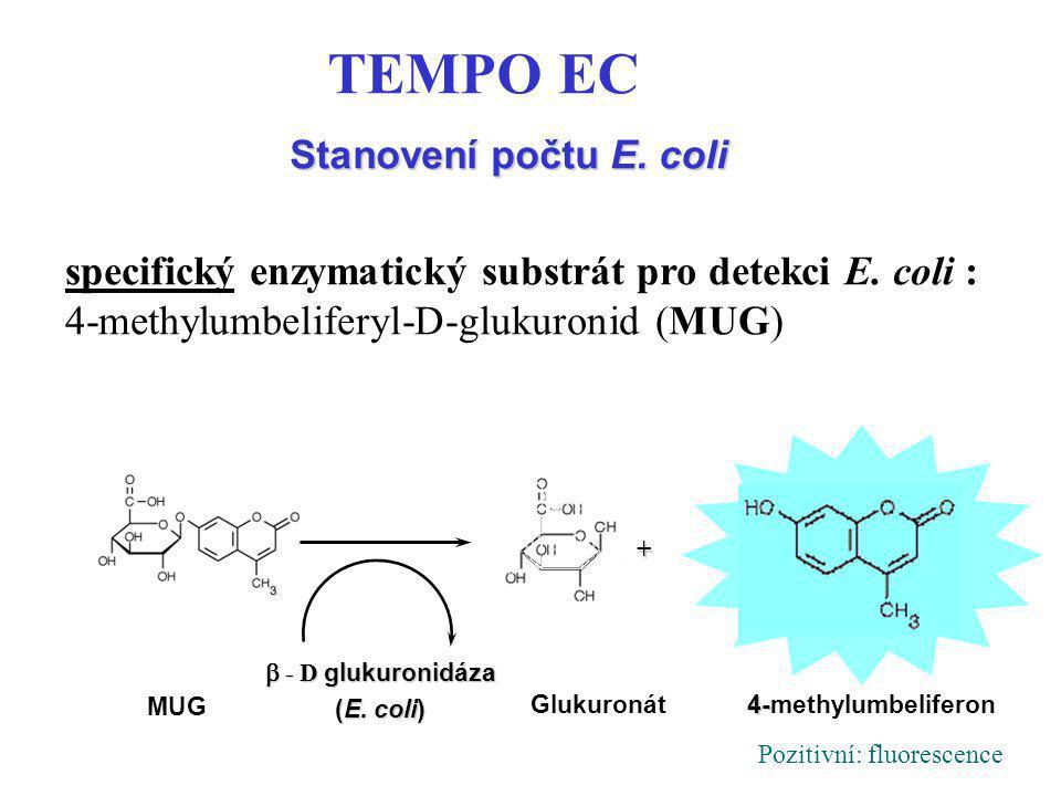 Stanovení počtu E. coli MUG  -D glukuronidáza  - D glukuronidáza (E. coli) Glukuronát 4- 4-methylumbeliferon + TEMPO EC specifický enzymatický sub