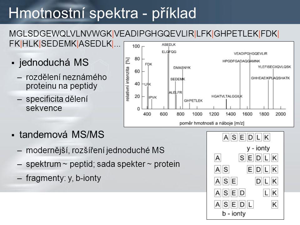 Hmotnostní spektra - příklad  jednoduchá MS –rozdělení neznámého proteinu na peptidy –specificita dělení sekvence MGLSDGEWQLVLNVWGK|VEADIPGHGQEVLIR|LFK|GHPETLEK|FDK| FK|HLK|SEDEMK|ASEDLK|...