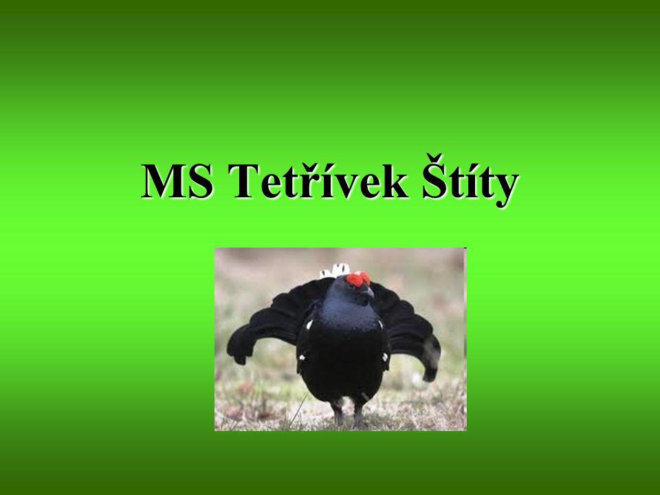 MS Tetřívek Štíty