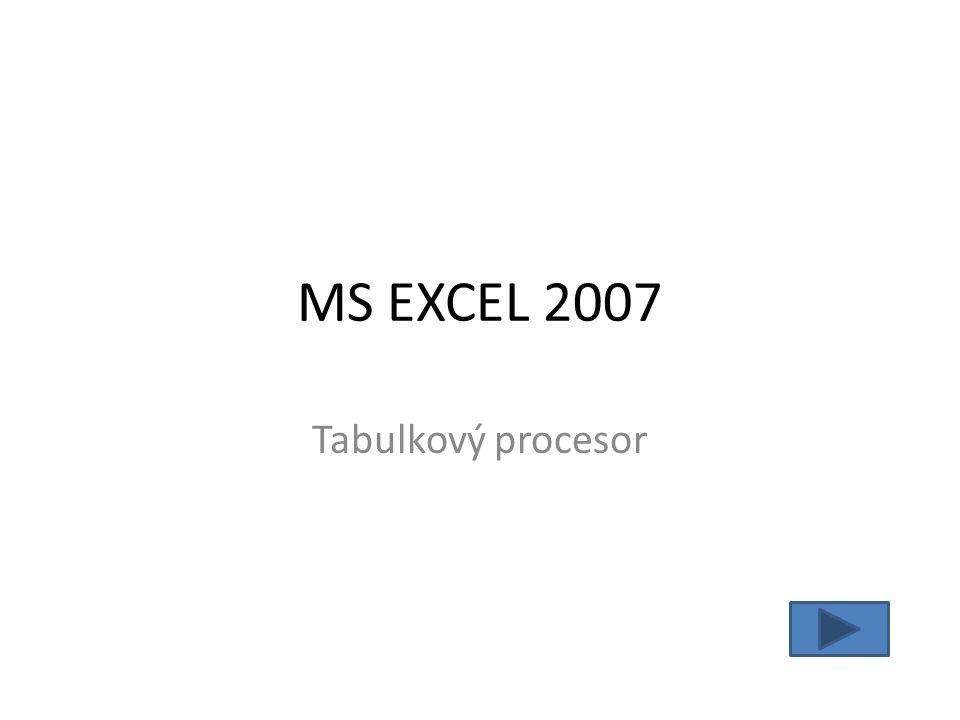 MS EXCEL 2007 Tabulkový procesor
