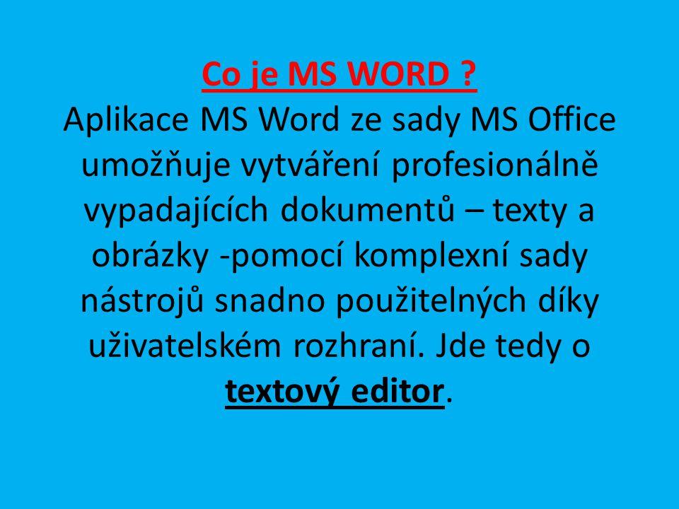 Jak vypadá MS Word ? Na ploše nebo v programech jej najdeme pod ikonou