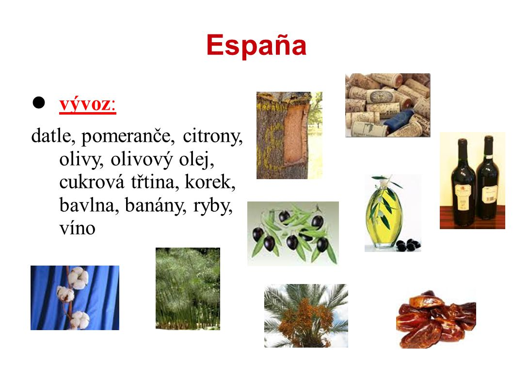 España vývoz: datle, pomeranče, citrony, olivy, olivový olej, cukrová třtina, korek, bavlna, banány, ryby, víno