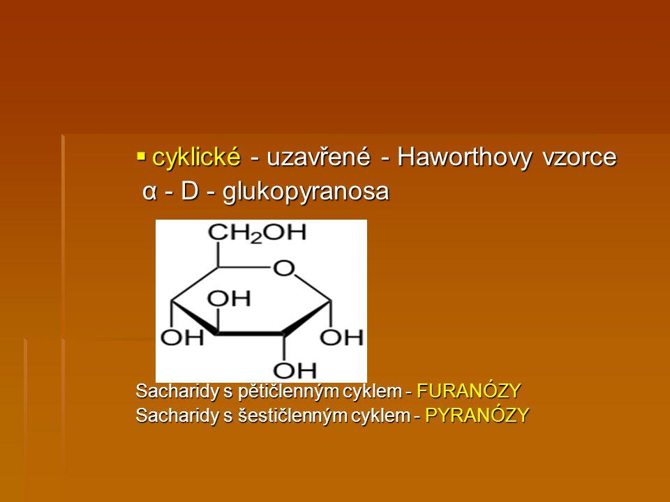  cyklické - uzavřené - Haworthovy vzorce α - D - glukopyranosa α - D - glukopyranosa Sacharidy s pětičlenným cyklem - FURANÓZY Sacharidy s šestičlenn