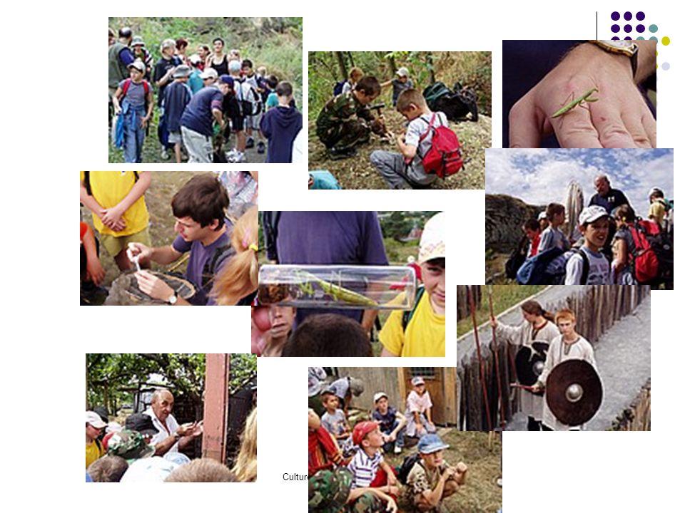 Cultureplus, spol. s r.o. 2006 Podpora vícejazyčnosti a veřejné dostupnosti, společná databáze AML, internet, publikační činnost Podpora a popularizac