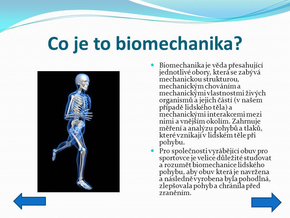 Co je to biomechanika? Biomechanika je věda přesahující jednotlivé obory, která se zabývá mechanickou strukturou, mechanickým chováním a mechanickými