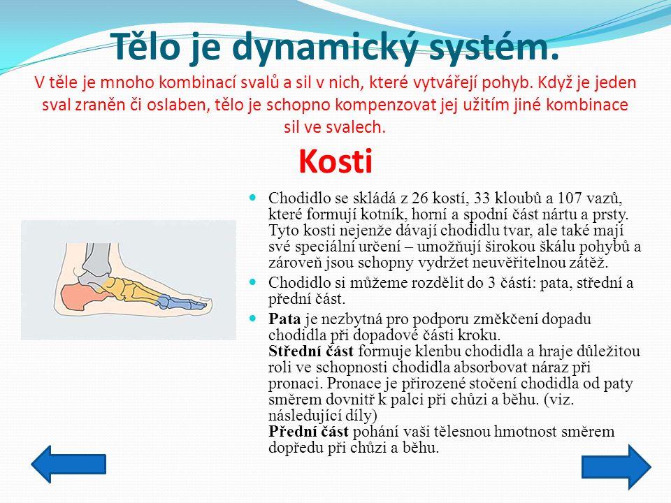 Tělo je dynamický systém. V těle je mnoho kombinací svalů a sil v nich, které vytvářejí pohyb. Když je jeden sval zraněn či oslaben, tělo je schopno k
