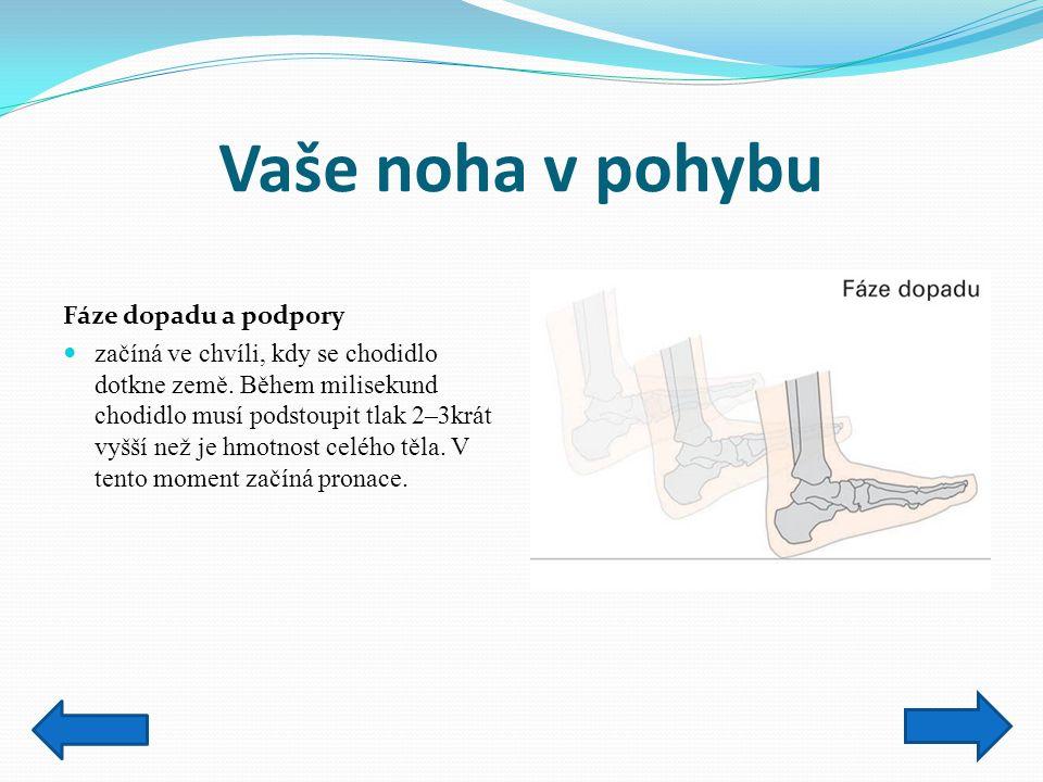Vaše noha v pohybu Fáze mezipolohy začíná poté, co chodidlo dosahuje maximální pronace (když je chodidlo uprostřed své fáze přetáčení dovnitř směrem k palci).
