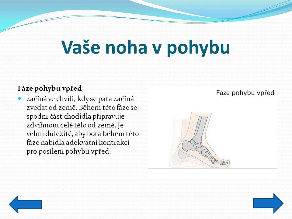 Vaše noha v pohybu Fáze pohybu vpřed začíná ve chvíli, kdy se pata začíná zvedat od země. Během této fáze se spodní část chodidla připravuje zdvihnout