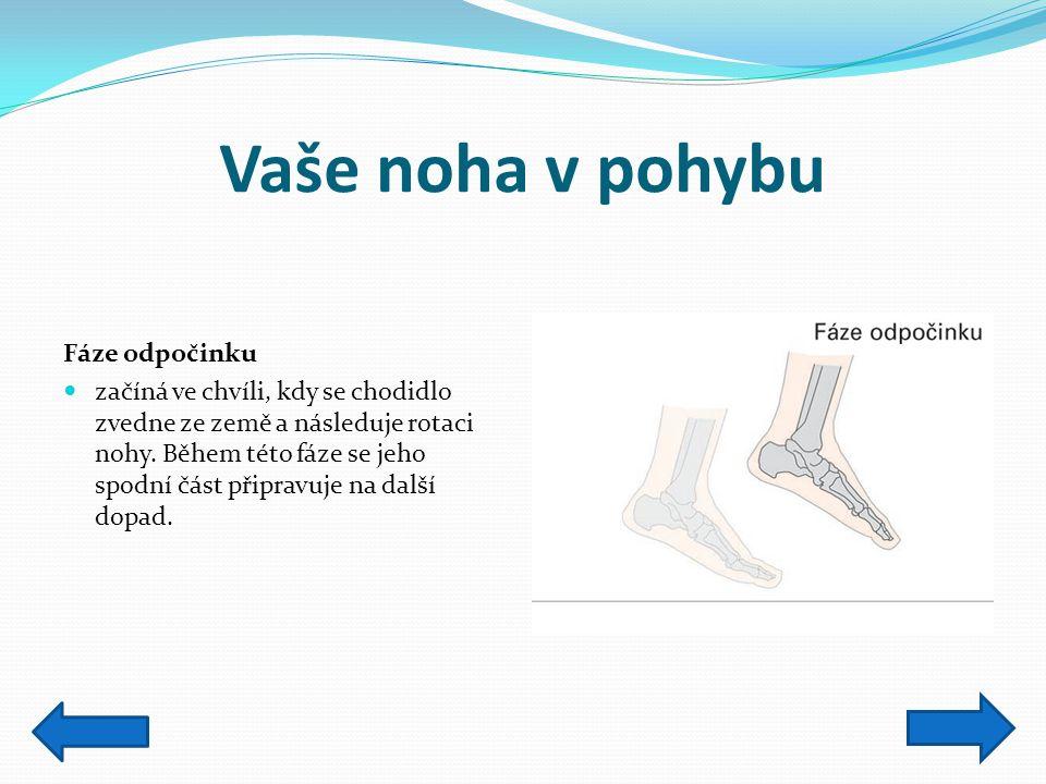 Vaše noha v pohybu Fáze odpočinku začíná ve chvíli, kdy se chodidlo zvedne ze země a následuje rotaci nohy. Během této fáze se jeho spodní část připra