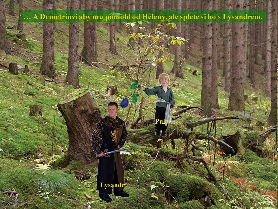 … A Demetriovi aby mu pomohl od Heleny, ale splete si ho s Lysandrem. Lysandr Puk