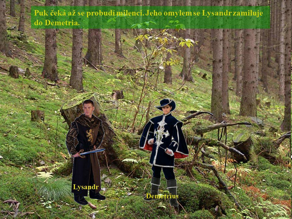 Puk čeká až se probudí milenci. Jeho omylem se Lysandr zamiluje do Demetria. Lysandr Demetrius