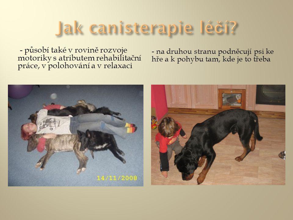- působí také v rovině rozvoje motoriky s atributem rehabilitační práce, v polohování a v relaxaci - na druhou stranu podněcují psi ke hře a k pohybu