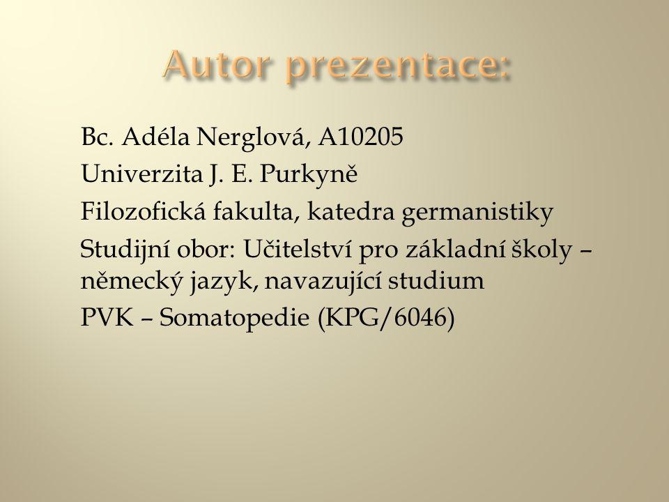 Bc. Adéla Nerglová, A10205 Univerzita J. E. Purkyně Filozofická fakulta, katedra germanistiky Studijní obor: Učitelství pro základní školy – německý j
