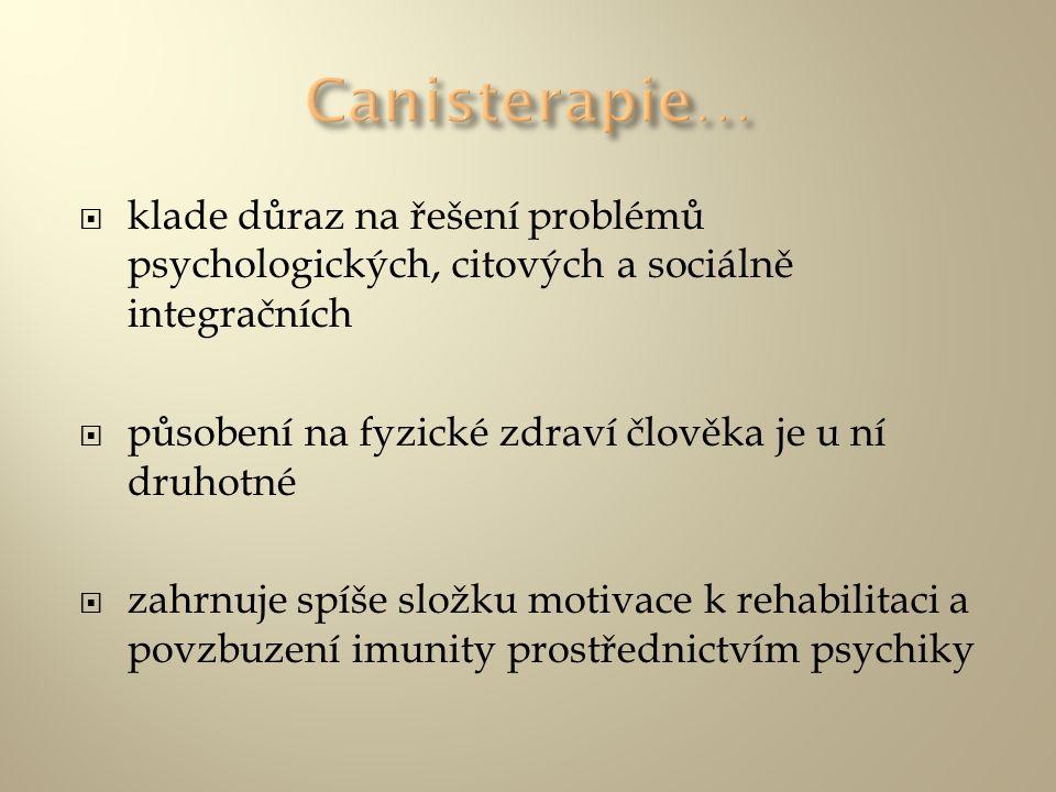  klade důraz na řešení problémů psychologických, citových a sociálně integračních  působení na fyzické zdraví člověka je u ní druhotné  zahrnuje sp