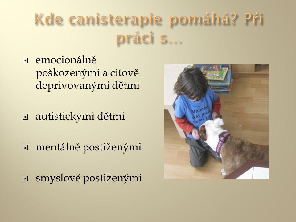 - působí také v rovině rozvoje motoriky s atributem rehabilitační práce, v polohování a v relaxaci - na druhou stranu podněcují psi ke hře a k pohybu tam, kde je to třeba