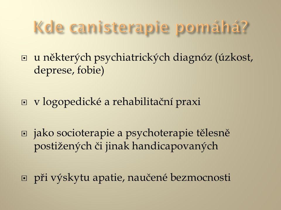 u některých psychiatrických diagnóz (úzkost, deprese, fobie)  v logopedické a rehabilitační praxi  jako socioterapie a psychoterapie tělesně posti