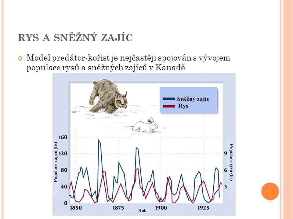 RYS A SNĚŽNÝ ZAJÍC Model predátor-kořist je nejčastěji spojován s vývojem populace rysů a sněžných zajíců v Kanadě