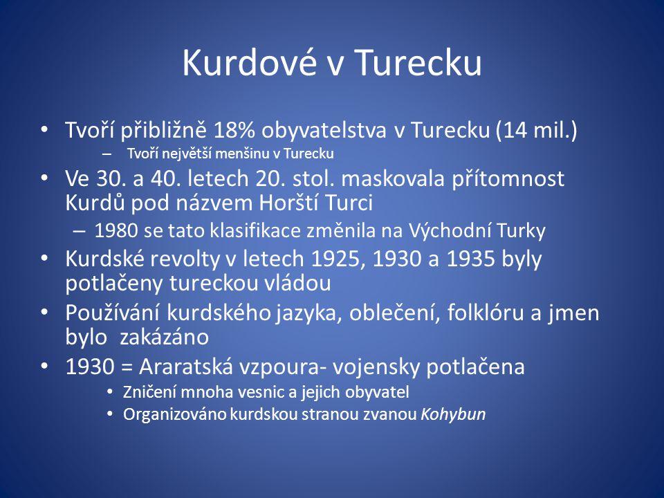 Kurdové v Turecku Tvoří přibližně 18% obyvatelstva v Turecku (14 mil.) – Tvoří největší menšinu v Turecku Ve 30. a 40. letech 20. stol. maskovala přít