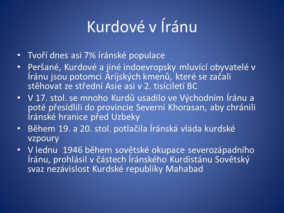 Kurdové v Íránu Tvoří dnes asi 7% íránské populace Peršané, Kurdové a jiné indoevropsky mluvící obyvatelé v Íránu jsou potomci Áríjských kmenů, které