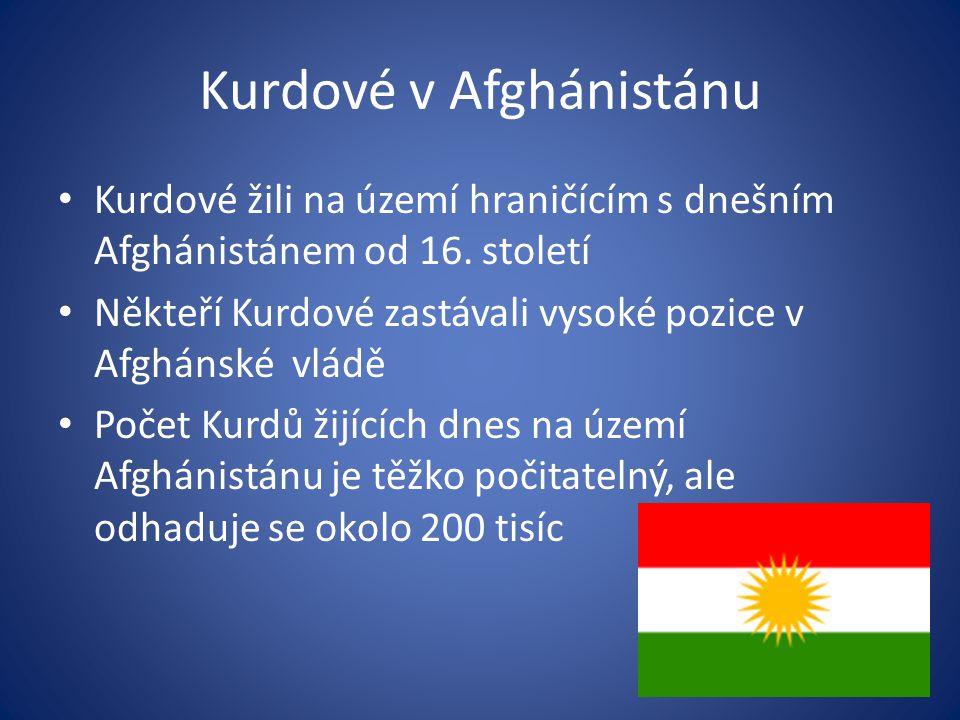 Kurdové v Afghánistánu Kurdové žili na území hraničícím s dnešním Afghánistánem od 16. století Někteří Kurdové zastávali vysoké pozice v Afghánské vlá