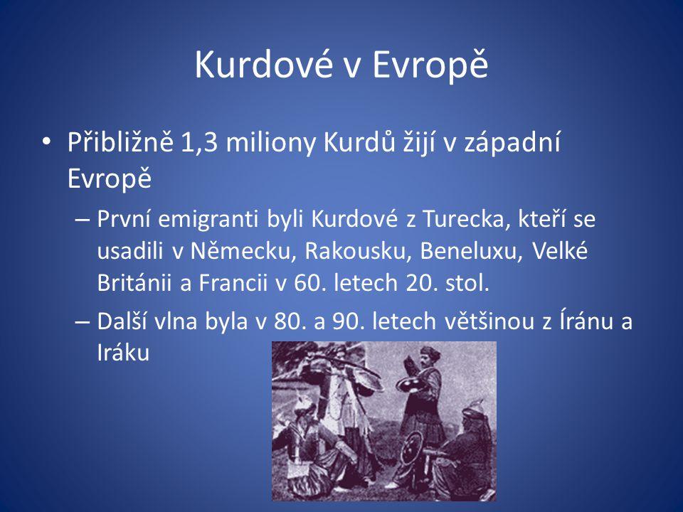 Kurdové v Evropě Přibližně 1,3 miliony Kurdů žijí v západní Evropě – První emigranti byli Kurdové z Turecka, kteří se usadili v Německu, Rakousku, Ben