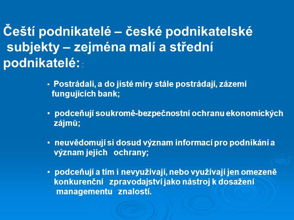 Čeští podnikatelé – české podnikatelské subjekty – zejména malí a střední podnikatelé: : Postrádali, a do jisté míry stále postrádají, zázemí fungujíc