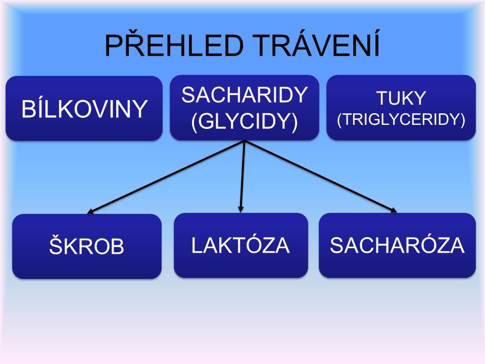 PŘEHLED TRÁVENÍ BÍLKOVINY SACHARIDY (GLYCIDY) SACHARIDY (GLYCIDY) TUKY (TRIGLYCERIDY) TUKY (TRIGLYCERIDY) ŠKROB LAKTÓZA SACHARÓZA
