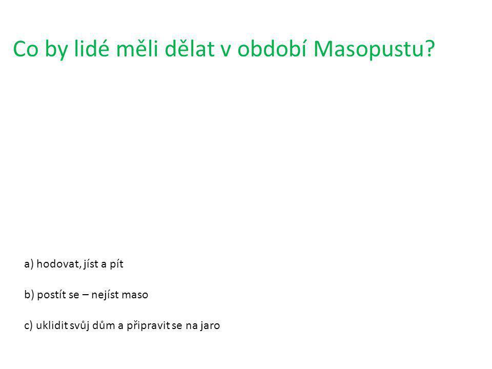 Co znamená při Masopustu Tučňák.