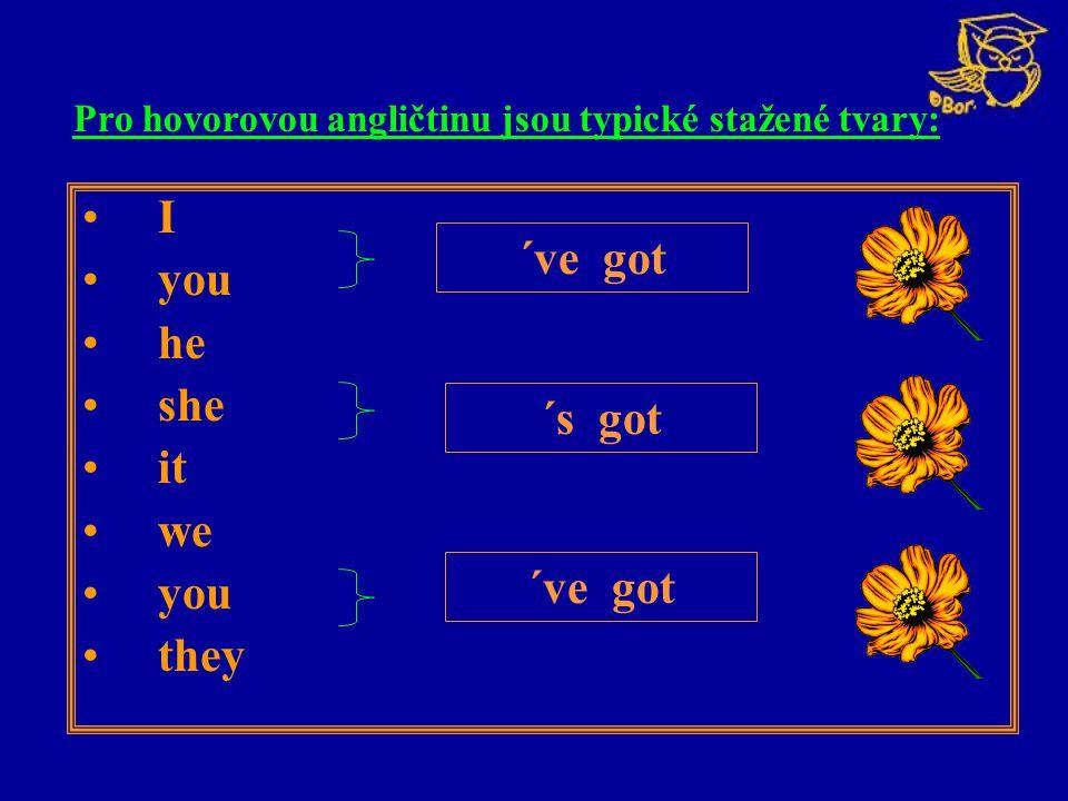 I you he she it we you they ´ve got ´s got Pro hovorovou angličtinu jsou typické stažené tvary: