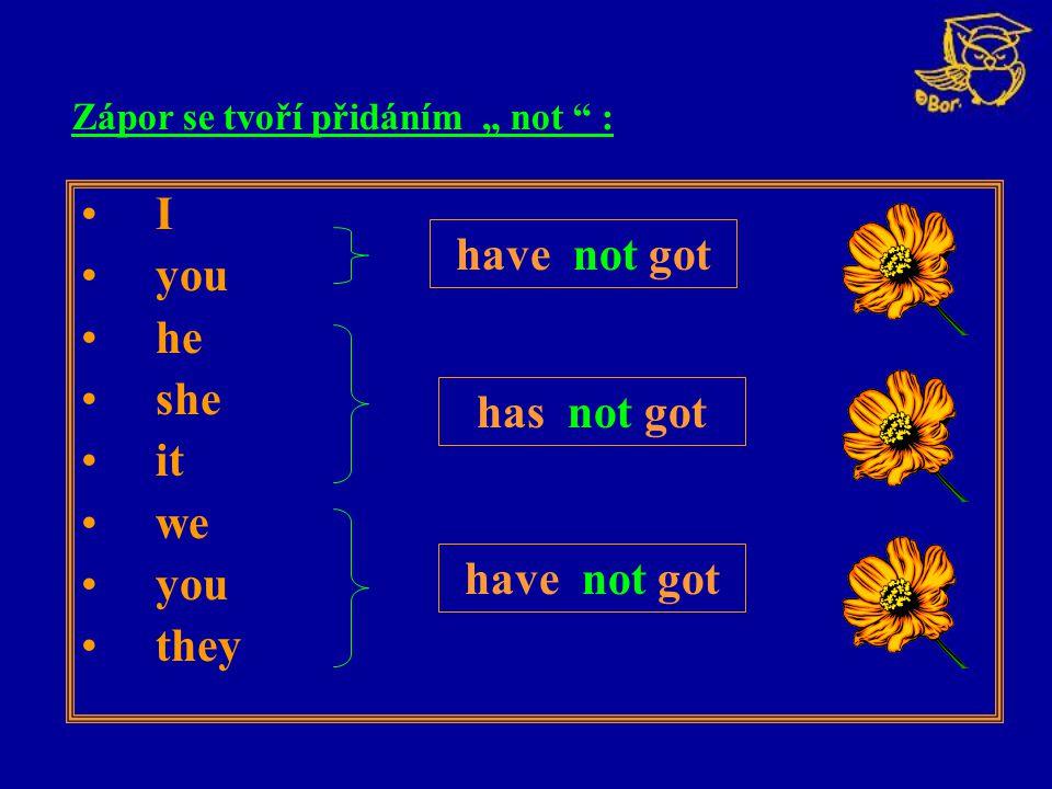 """I you he she it we you they have not got has not got Zápor se tvoří přidáním """" not """" :"""