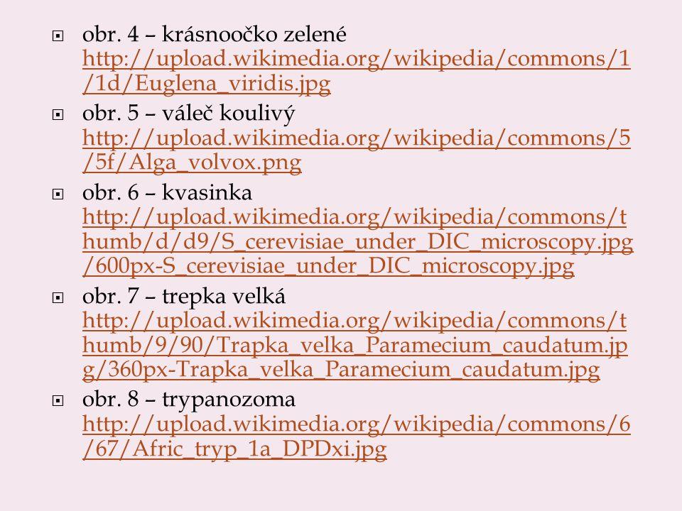 obr. 4 – krásnoočko zelené http://upload.wikimedia.org/wikipedia/commons/1 /1d/Euglena_viridis.jpg http://upload.wikimedia.org/wikipedia/commons/1 /