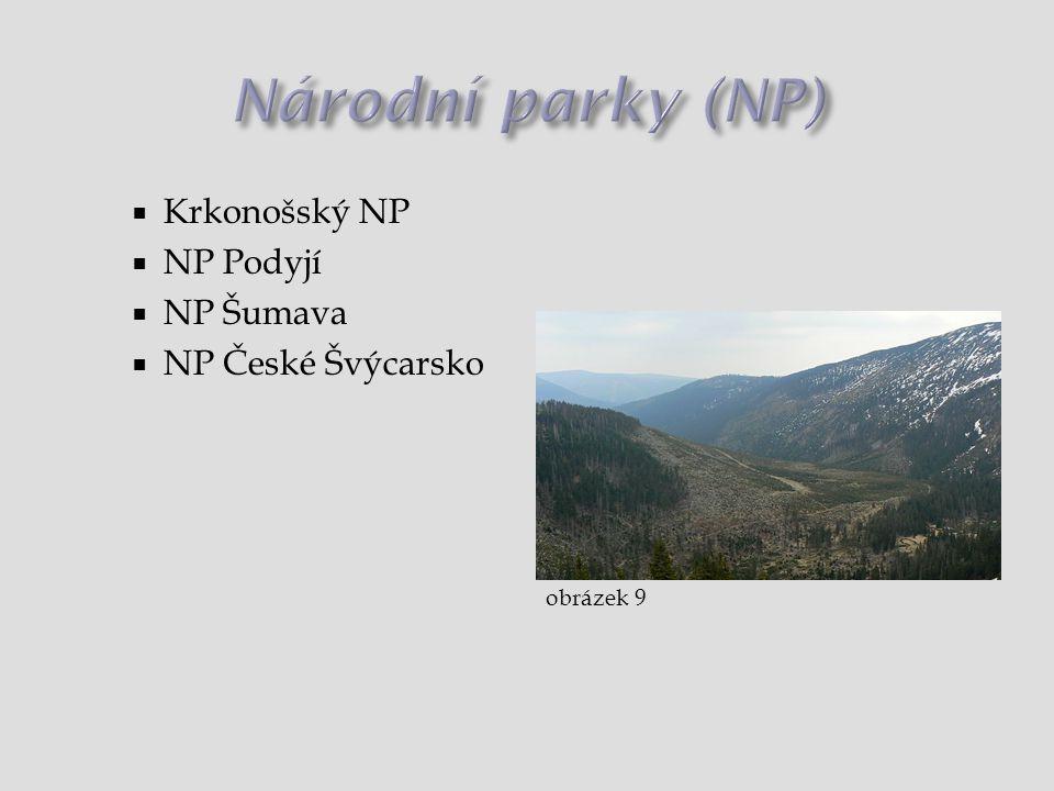  Krkonošský NP  NP Podyjí  NP Šumava  NP České Švýcarsko obrázek 9