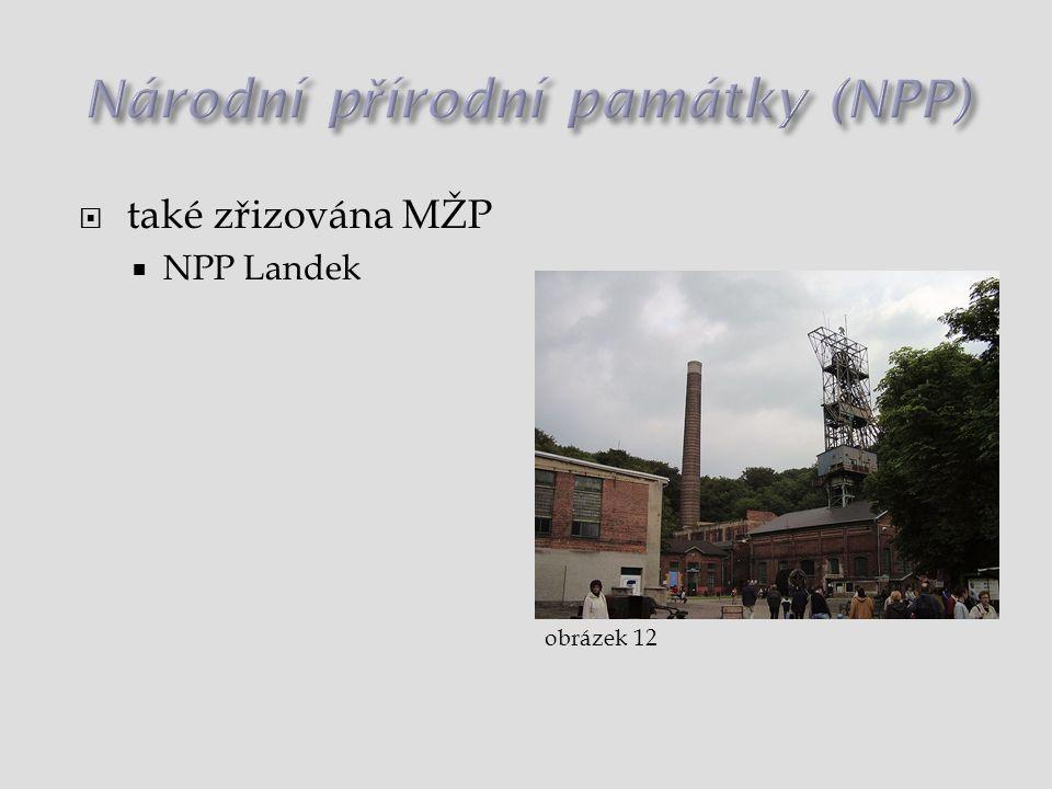  také zřizována MŽP  NPP Landek obrázek 12